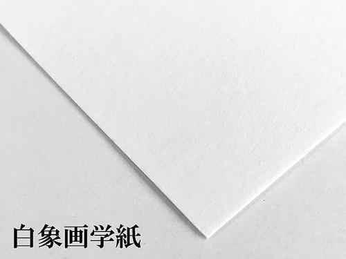 白象画学紙