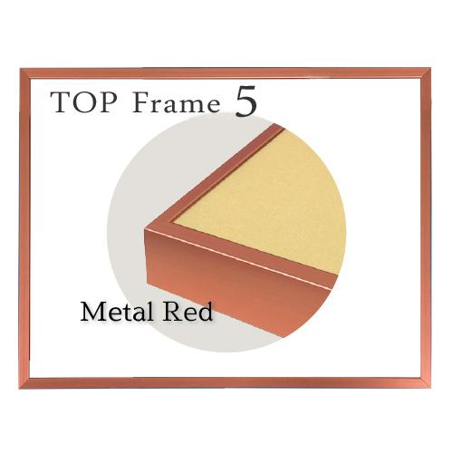 トップフレーム5<メタルレッド>