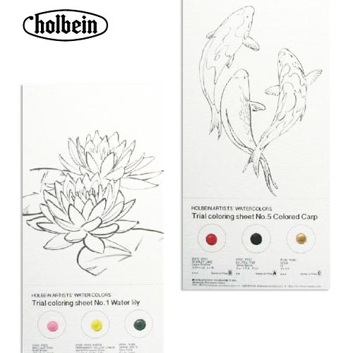ホルベイン 透明水彩絵具 水彩トライアルシート 3色塗り絵